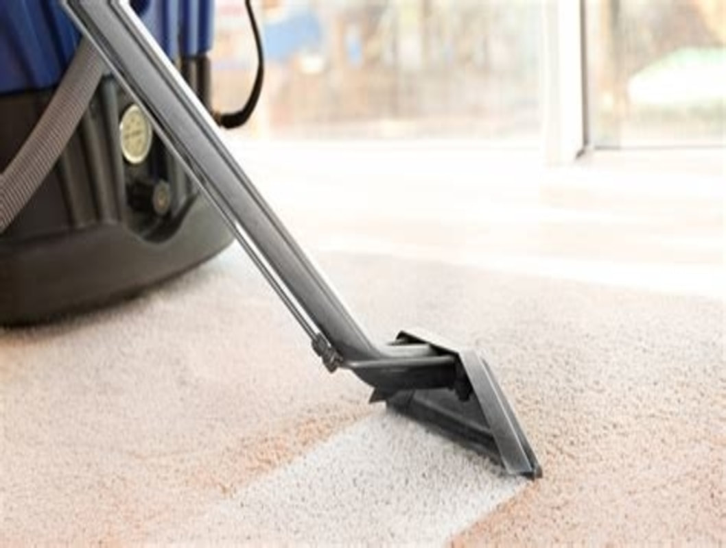 Image result for Carpets Steam Cleaning